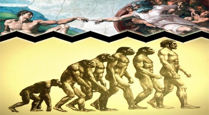 The Origin of Reason